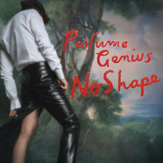 No Shape mp3 Album by Perfume Genius