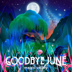 Magic Valley mp3 Album by Goodbye June