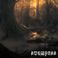 Symmetry And Dissonance mp3 Album by Swampuss