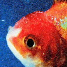 Big Fish Theory mp3 Album by Vince Staples