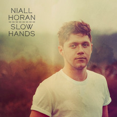 Slow Hands mp3 Single by Niall Horan