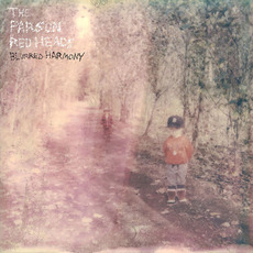 Blurred Harmony by The Parson Red Heads