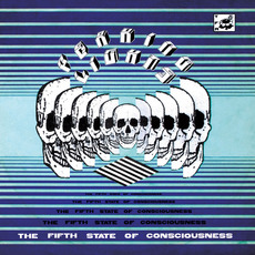 The Fifth State of Consciousness mp3 Album by Peaking Lights