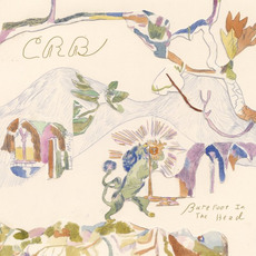 Barefoot In The Head mp3 Album by Chris Robinson Brotherhood
