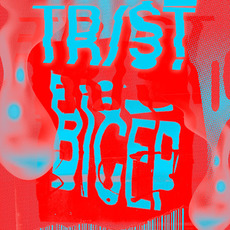 Bicep mp3 Single by TR/ST