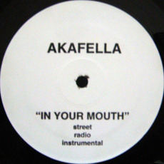 In Your Mouth mp3 Single by Akinyele