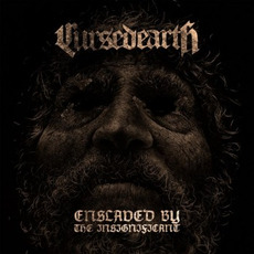 Enslaved By The Insignificant mp3 Album by Cursed Earth