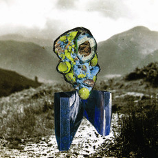 The Glass Trunk mp3 Album by Richard Dawson
