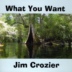 What You Want mp3 Album by Jim Crozier