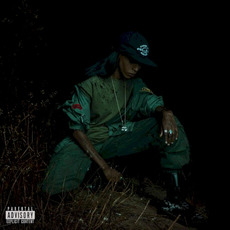 Back to the Woods mp3 Album by Angel Haze