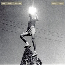 Love What Survives mp3 Album by Mount Kimbie