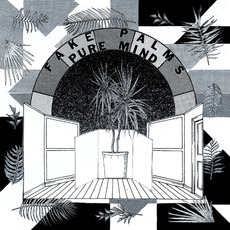 Pure Mind by Fake Palms