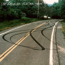 Electric Trim mp3 Album by Lee Ranaldo