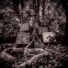 Harmony of Difference mp3 Album by Kamasi Washington