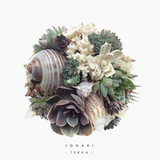 Terra mp3 Album by Johari