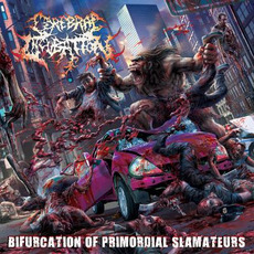 Bifurcation Of Promordial Slamateurs by Cerebral Incubation