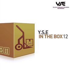 Y.S.E In The Box 12 mp3 Compilation by Various Artists
