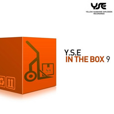 Y.S.E In The Box 9 mp3 Compilation by Various Artists