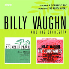 Theme From A Summer Place / The Sundowners mp3 Artist Compilation by Billy Vaughn