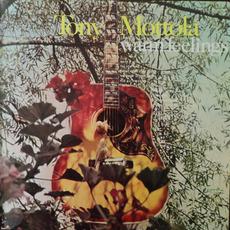 Warm Feelings mp3 Album by Tony Mottola