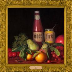 Deer Tick, Vol. 2 mp3 Album by Deer Tick