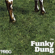 Prog P48: Funky Dung mp3 Compilation by Various Artists