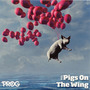 Prog P21: Pigs on the Wing