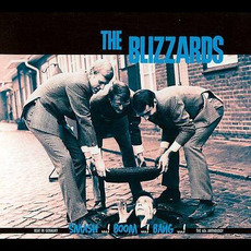 The Blizzards mp3 Artist Compilation by The Blizzards