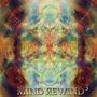 Mind Rewind 3