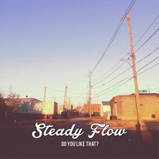Do You Like That? mp3 Album by Steady Flow