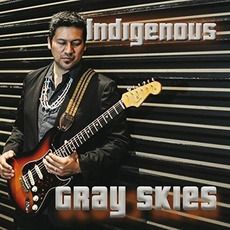 Gray Skies mp3 Album by Indigenous