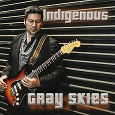 Gray Skies mp3 Album by Indigenous