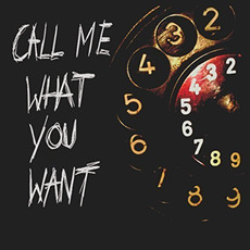 Call Me What You Want by The Jukes