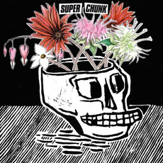 What a Time to Be Alive mp3 Album by Superchunk