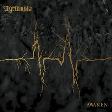 Awaken mp3 Album by Agrimonia