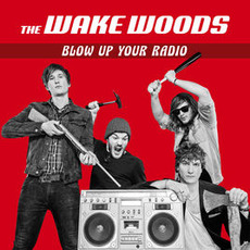Blow up Your Radio mp3 Album by The Wake Woods