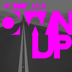 Own Up by Rabbit Junk