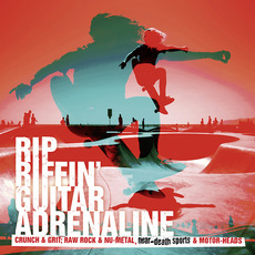 DEM091: Rip Riffin' Guitar Adrenaline mp3 Artist Compilation by Yves Michel & Martin Haene