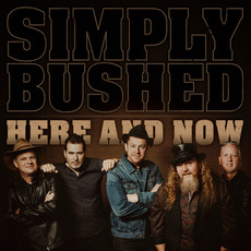 Here and Now by Simply Bushed