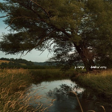 Hundred Acres mp3 Album by S. Carey