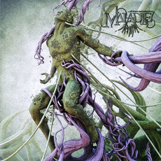 Of Harm and Salvation mp3 Album by Maladie