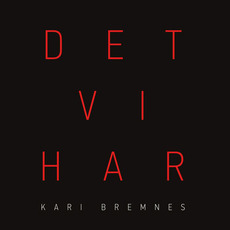 Det Vi Har mp3 Album by Kari Bremnes