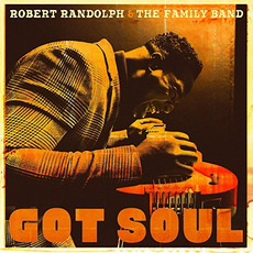 Got Soul mp3 Album by Robert Randolph & The Family Band