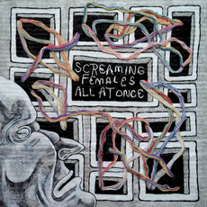 All at Once mp3 Album by Screaming Females