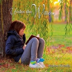 Under The Willow mp3 Single by Andrew Kinsella