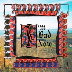 I'm Bad Now mp3 Album by Nap Eyes