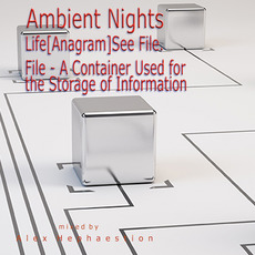 Ambient Nights: Life(Anagram)See File. File - A Container Used for the Storage of Information mp3 Compilation by Various Artists