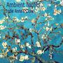Ambient Nights: Indie Anna's Clone