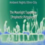 Ambient Nights: Ethni-City - The Moonlight Tapestries (Prophectic Pictograms)