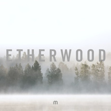 In Stillness mp3 Album by Etherwood